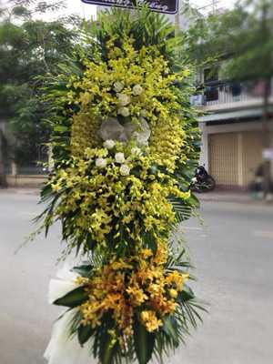 Hoa tang lễ lan ly