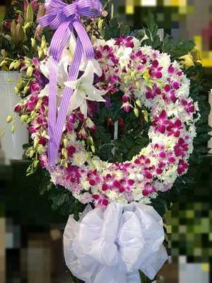 Lãng hoa viếng trắng tím